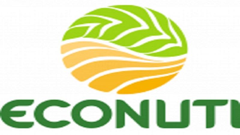 Công ty Econuti tuyển dụng chuyên viên xuất khẩu